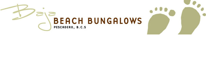 Baja Beach Bungalows